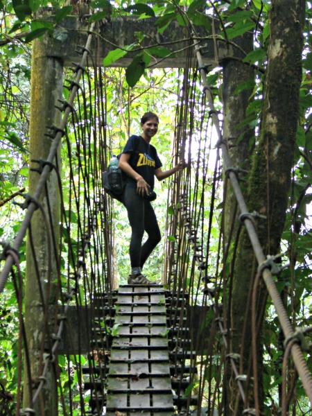 Monkey Bridge ahead