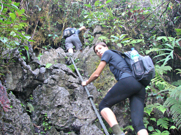 Climbing the Pinnacles on Borneo is not an easy task